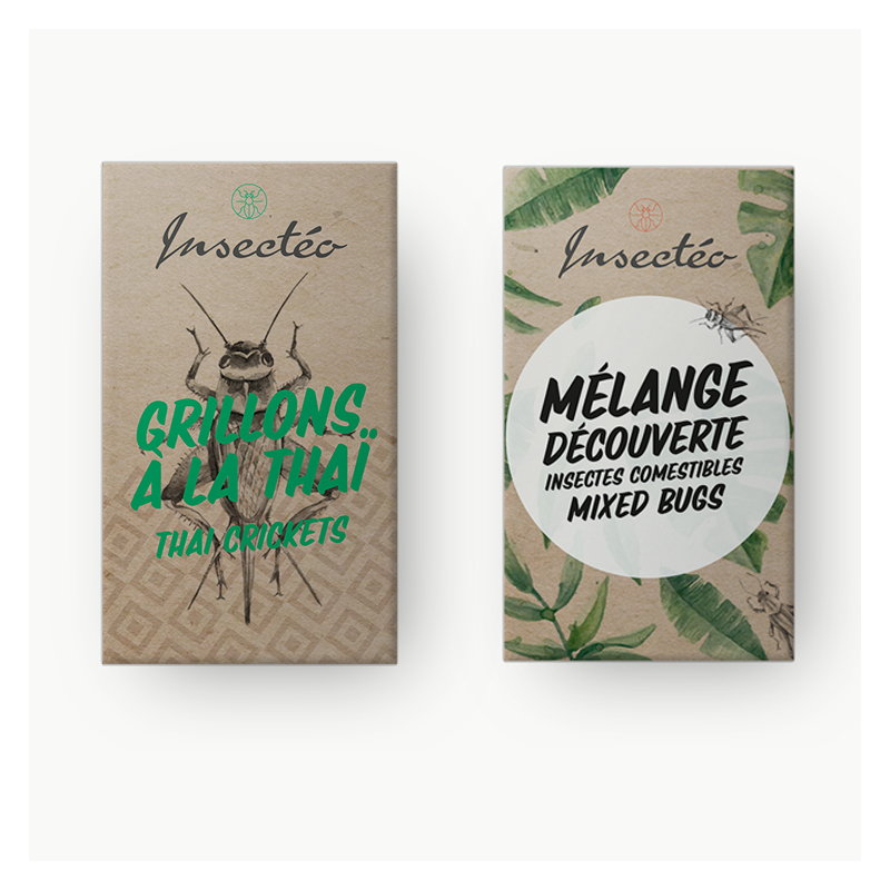 Insect o edible insects snack pack for aperitif - Lunch box nature et decouverte ...