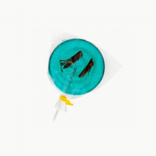 Blueberry & Grasshopper lollipop