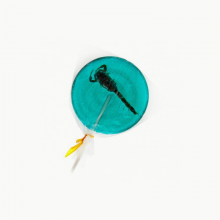 Scorpion & Blueberry Lollipop