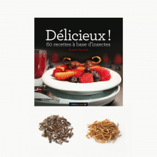 Cookbook + Insects Pack