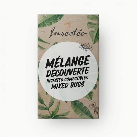Mélange découverte d'insectes - INSECTÉO