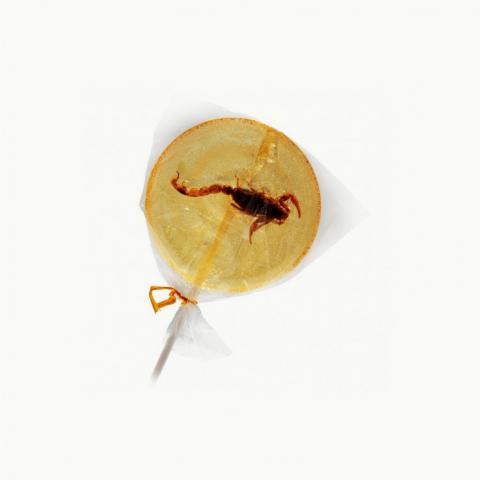 Sucette scorpion banane