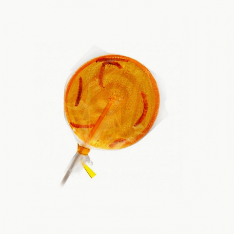 Mealworm Orange Lollipop