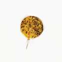 Sucette fourmis orange