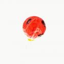Strawberry & Cricket lollipop