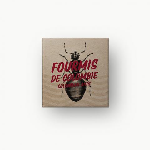 Fourmis de Colombie : le caviar des insectes