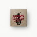 Fourmis de Colombie, le caviar des insectes - INSECTÉO