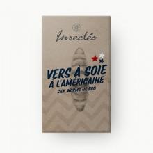 Vers à soie à l'américaine - INSECTÉO